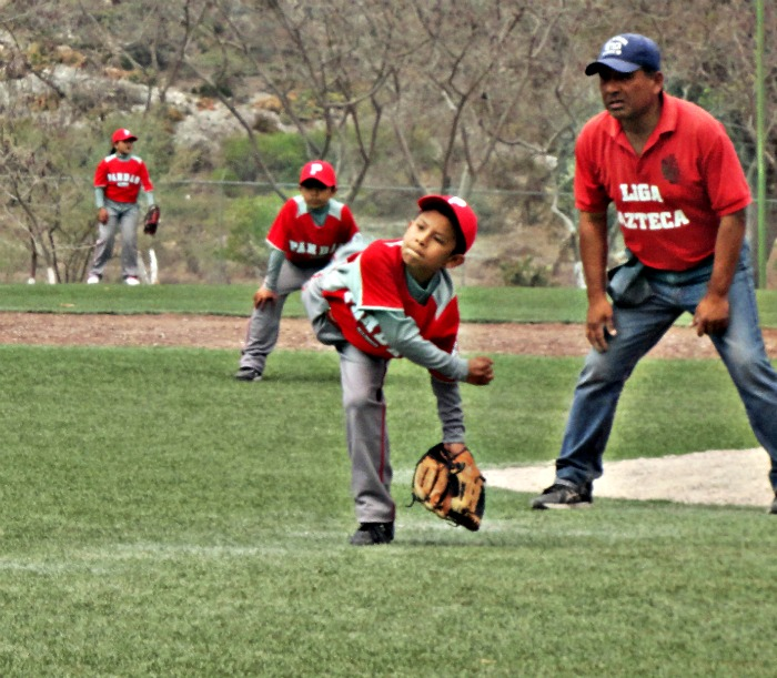 Club Pandas Tehuacán de Béisbol Infantil